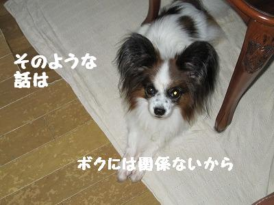 IMG_2469.jpg