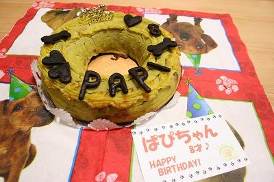 ぱぴのケーキ お肉のケーキ★