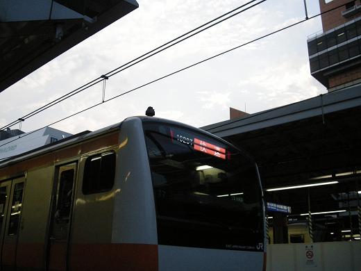 E233系(T7)
