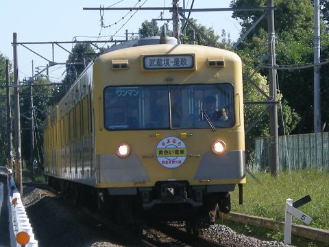 多摩川線旧101系-3
