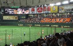20101007巨人vs広島 (18)