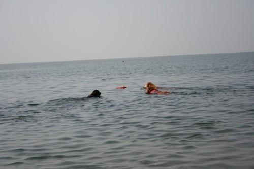 琵琶湖3ワン1