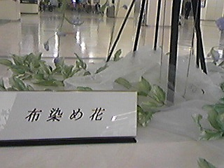 100502布染めのバラ