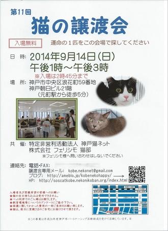 第11回猫の譲渡会