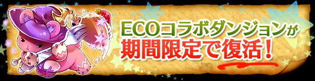 eco_20141120180459cc4.jpg