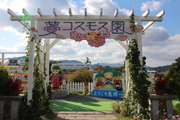 2014.11.06 亀岡夢コスモス園-1