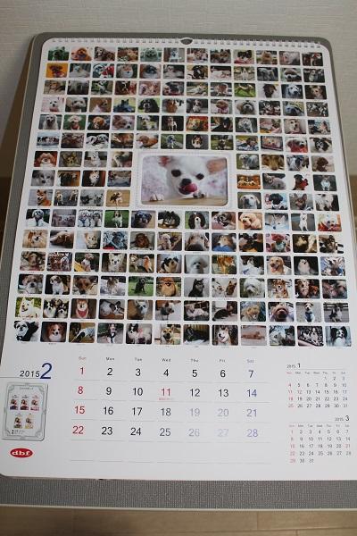 2014.12.26 デビフのカレンダー当選!2