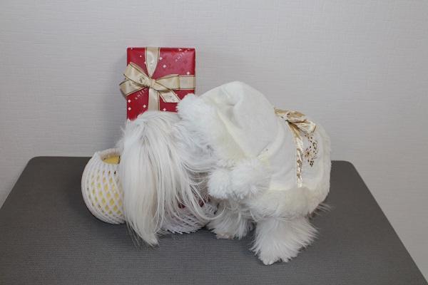 2014.12.25 メリークリスマス☆彡-3