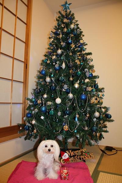 2014.12.25 メリークリスマス☆彡-11
