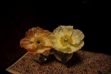 flower 16-2