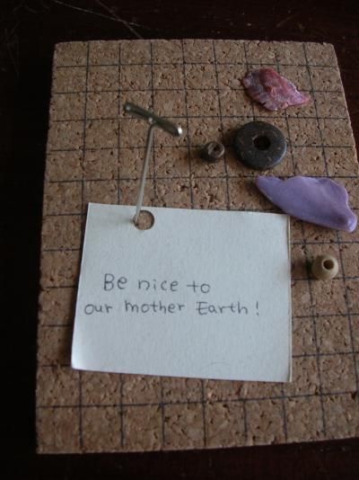 Be nice to our Mother Earth