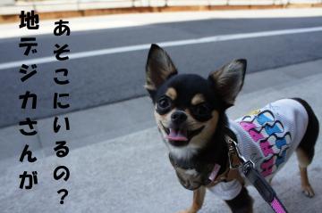 蝨ー繝・ず_convert_20110714213600