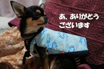 螳・_convert_20120107182419