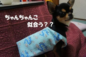 螳カ1_convert_20120107182510