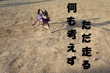 蜈ャ蝨・_convert_20120107182340