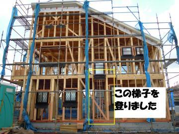 DSCN0753_convert_20111225233813.jpg