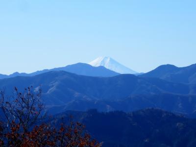 奥武蔵トレイルラン 関八州見晴し台より富士山を望む