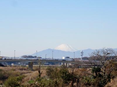 はるか大山の向こうには富士山