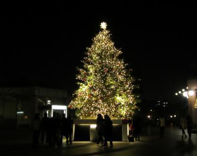恵比寿ガーデンプレイス クリスマスツリー