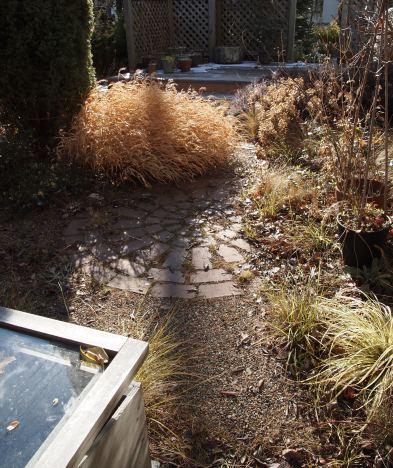 my-garden 090