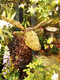 my-garden 109