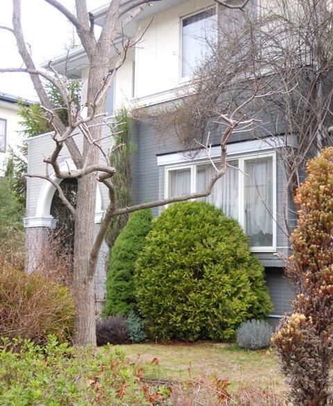 my-garden 093 (2)