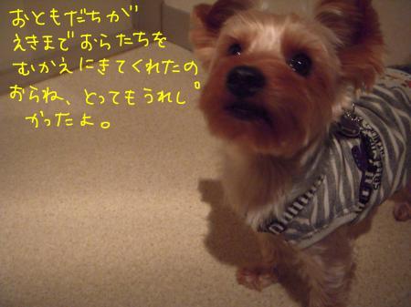 DSCN1920_convert_20120111100936.jpg