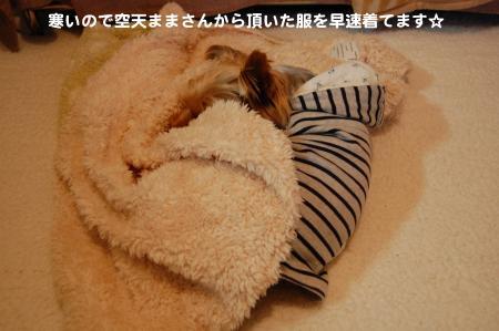 DSC_0010_convert_20120210230947.jpg