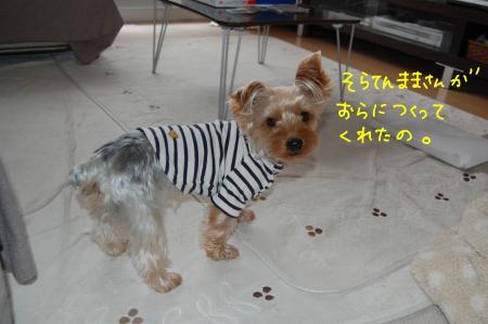 DSC_0012_convert_20111206224348.jpg