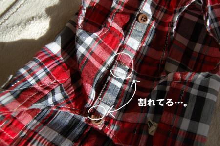 DSC_0014_convert_20111205213639.jpg