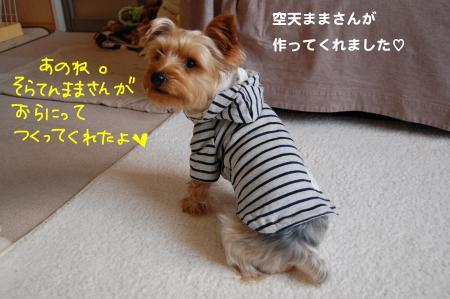 DSC_0016_convert_20120209235727.jpg