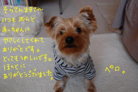 DSC_0022_convert_20120209235746.jpg
