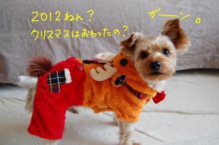 DSC_0048_convert_20120101012619.jpg