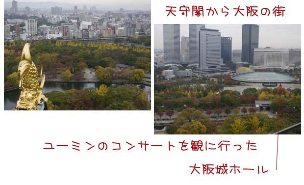 20101117-12.jpg