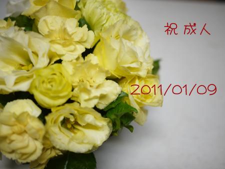 20110109-6.jpg