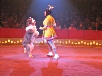 Big Apple Circus7