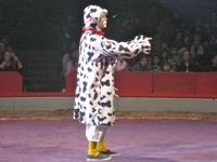 Big Apple Circus8