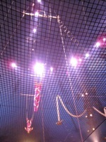 Big Apple Circus9