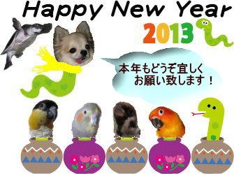 2013 1-3diary