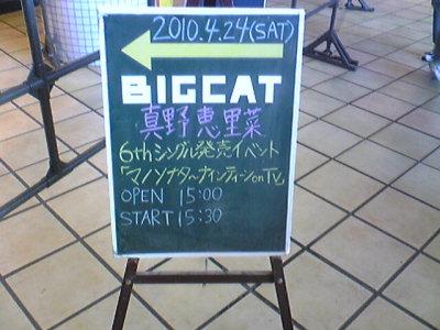 BIGCAT。
