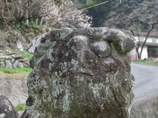 山祇神社松隈04