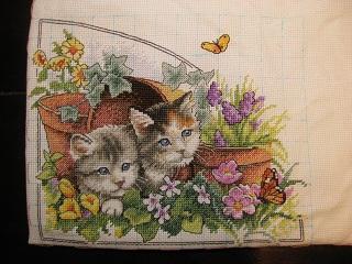 四季猫・春
