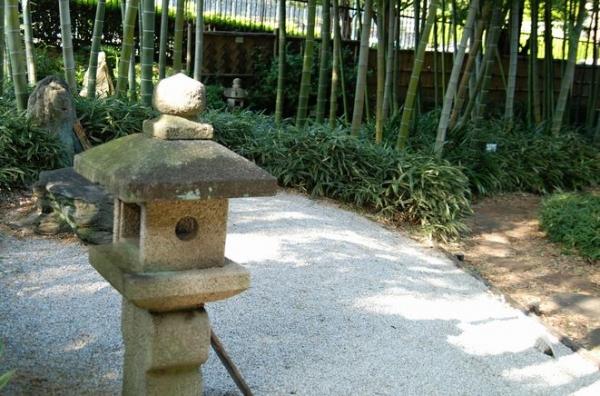 ak.赤塚植物園 20141019 012