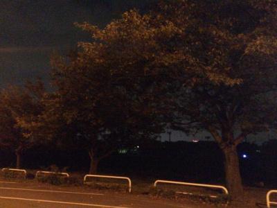 土手の道は真っ暗です