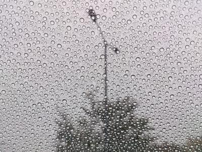 雨降ってる。。。