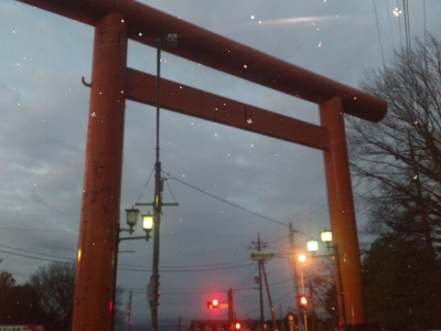 筑波山神社の鳥居