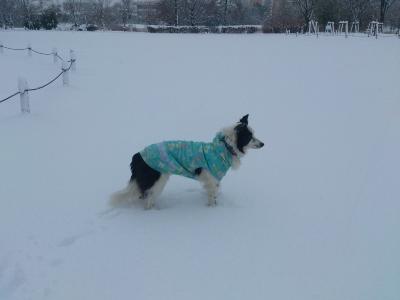 雪が深い!!