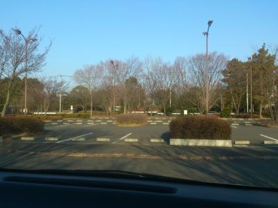 朝の公園の駐車場