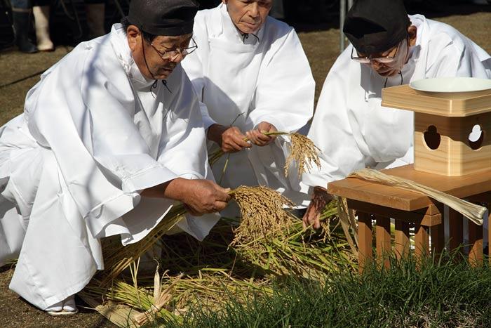 大神神社 抜穂祭2