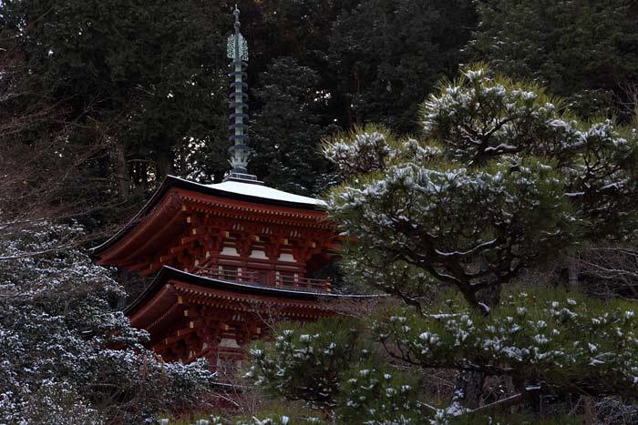 雪の浄瑠璃寺1
